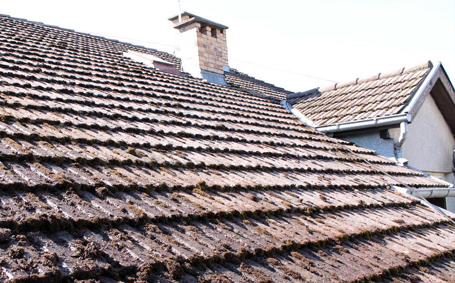 przed umyciem dachu 12