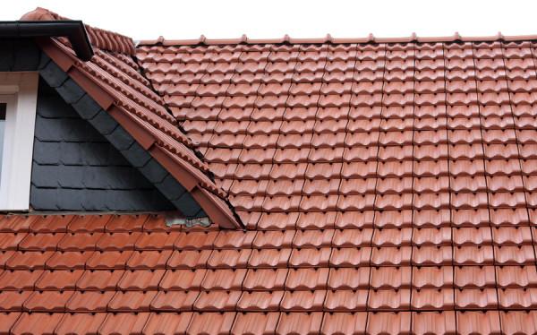 Dach po umyciu i odgrzybienu