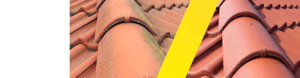 efekt po umyciu dachu 13