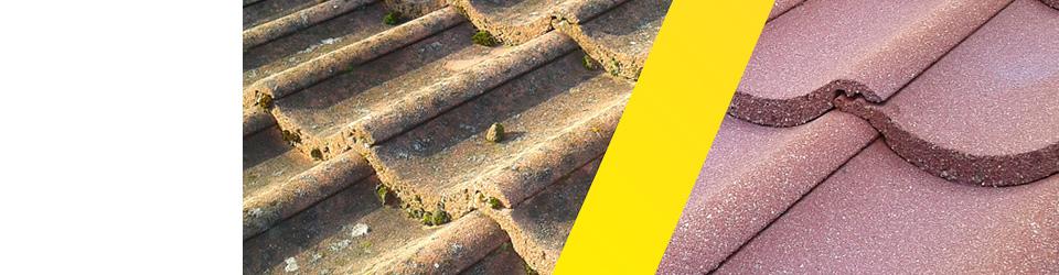 efekt po umyciu dachu 11